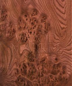 Шпон корень вяз